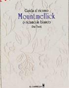 Guida al ricamo Mountmellick o ricamo in bianco